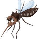 Mücken, Ameisen und andere Plagegeister