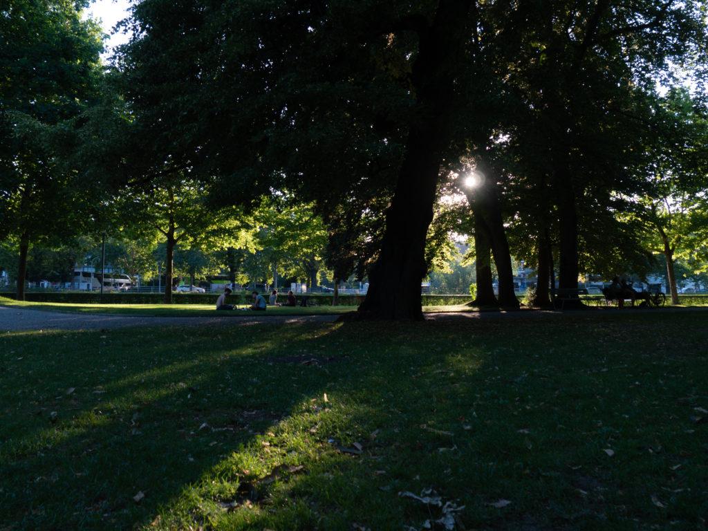 Abendstunden im Zürcher Platzspitz-Park